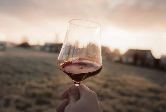 professionista del vino -export ed enoturismo