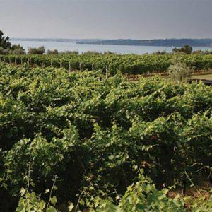 Destinazione-Lugana-wine-experience-Patrizia-Marazzi