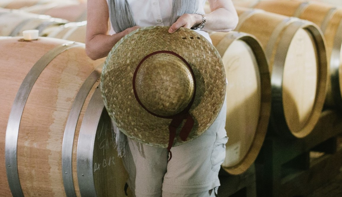 l'esperienza con il vino è ricerca