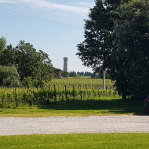 Lugana wine experience a piedi
